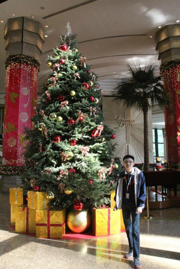Mark, the Christmas Tree, and Central Plaza